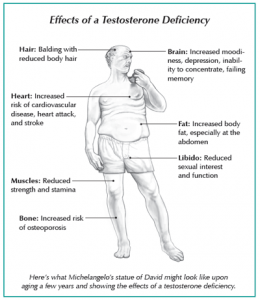 Diagram showing effects of a testosterone deficiency in men