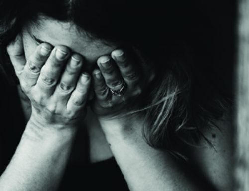 Book Review – Female Brain Gone Insane